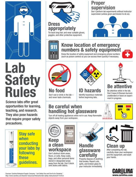 Lab Safety Riles - great for reminding students about how to have a fun, safe, lab experience.: